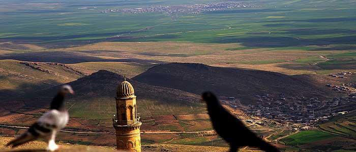Babil'in Asma Bahçeleri Nerededir?
