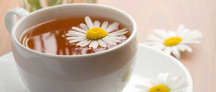 Papatya Çayı Nedir? Nasıl Hazırlanır?