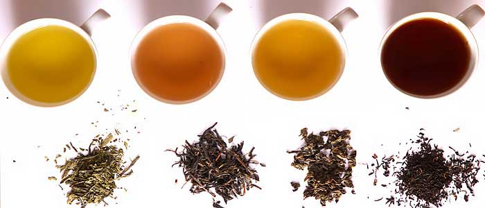 Yeşil Çayın Çeşitleri Nelerdir?
