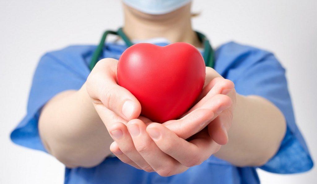Organ Bağışı Nedir? Nereye Yapılır? Yöntemleri Nelerdir?