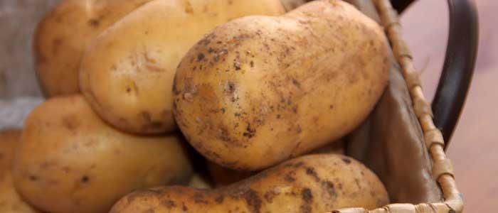 Patates Kabuklarını Kullanma Yöntemi