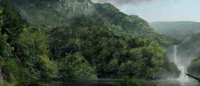 Ormanların Önemi ve Faydaları Nelerdir?