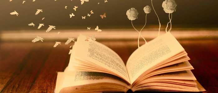 Kitaplardan Forex Öğrenmek