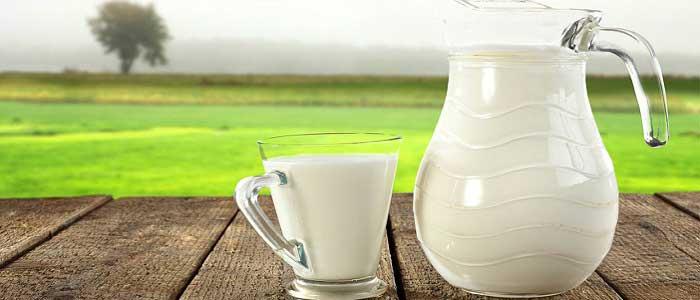 Süt Nedir?
