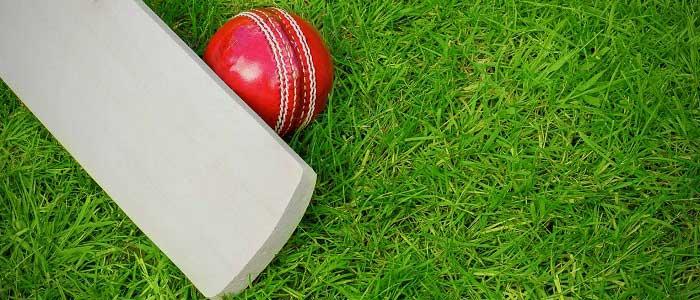 Kriket Nedir?