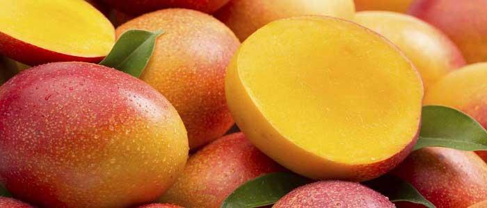 Mango Nedir?
