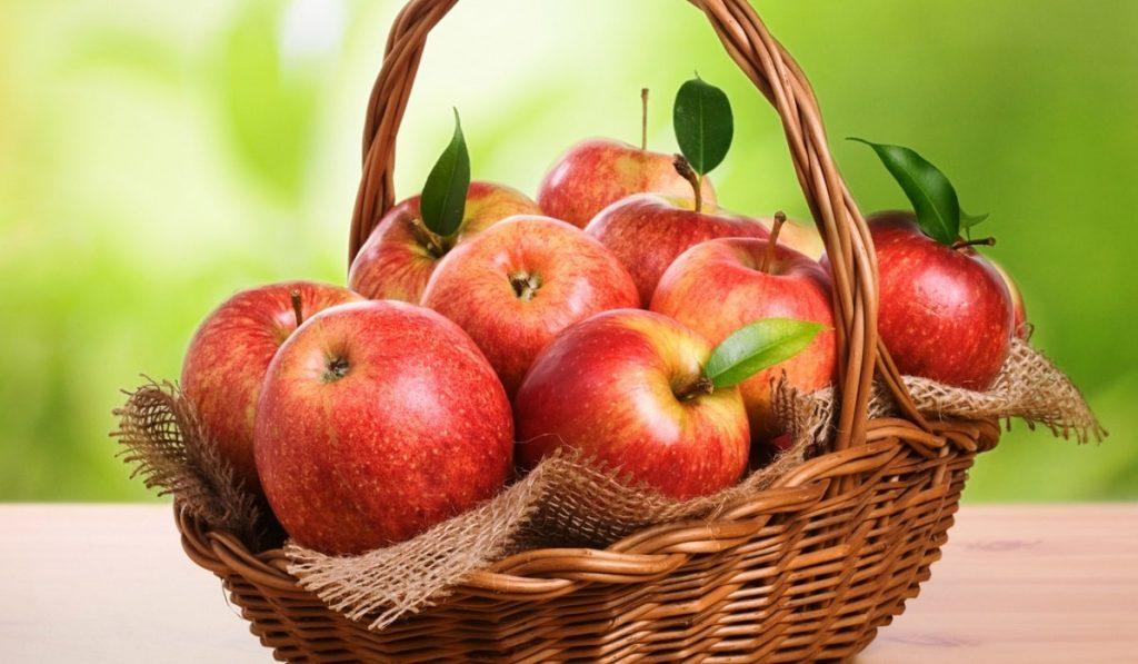 Elma Nedir? Çeşitleri, Özellikleri ve Faydaları Nelerdir?