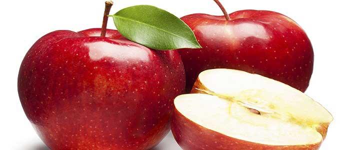 Elma Nedir?