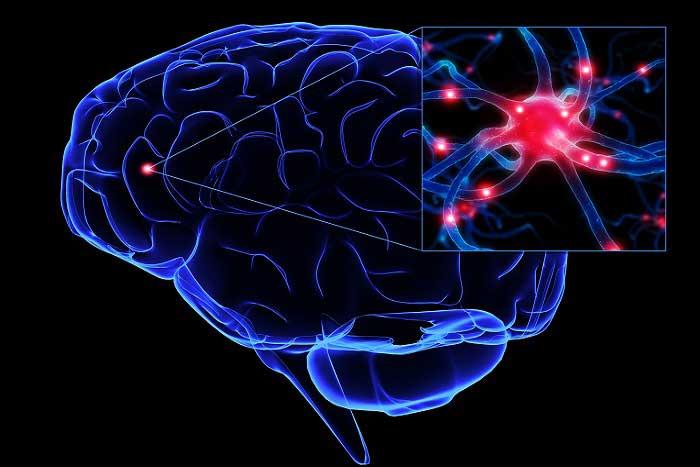 ALS (Amyotrofik Lateral Skleroz) Hastalığı Nedir? Nedenleri, Belirtileri, Korunma Yolları ve Tedavisi