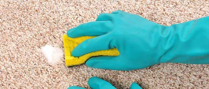 Doğal Yöntemlerle Shaggy Halı Temizliği Nasıl Yapılır?