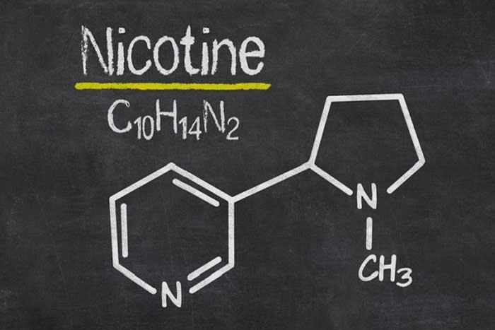 Nikotin Nedir? Özellikleri, Kullanım Alanları ve Zararları Nelerdir?