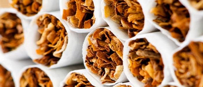 Nikotin Nedir?