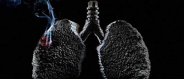 Nikotinin Zararları Nelerdir?