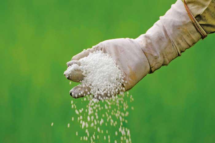 Güherçile (Potasyum Nitrat) Nedir? Özellikleri ve Kullanım Alanları Nelerdir?