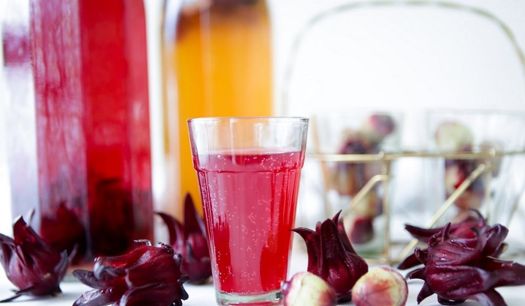 Hibiskus (Kerkede) Çayı Nedir? Nasıl Kullanılır? Faydaları ve Yan Etkileri Nelerdir?