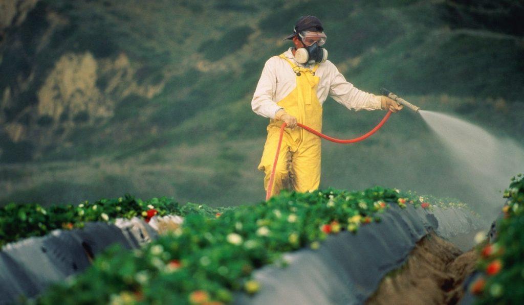 Pestisit Nedir? Çeşitleri, Özellikleri ve Zararları Nelerdir?