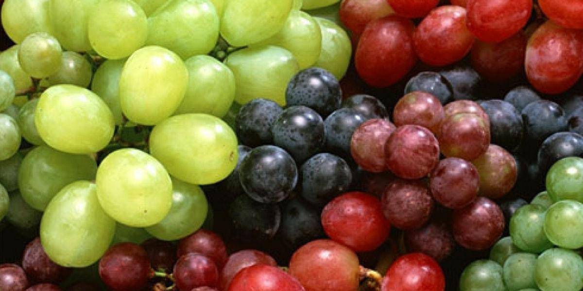 Üzüm Çeşitleri Nelerdir?