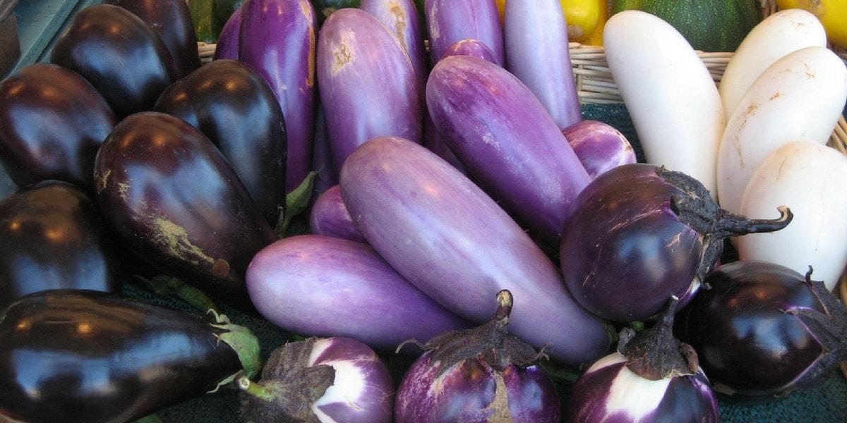 Patlıcan Çeşitleri Nelerdir?