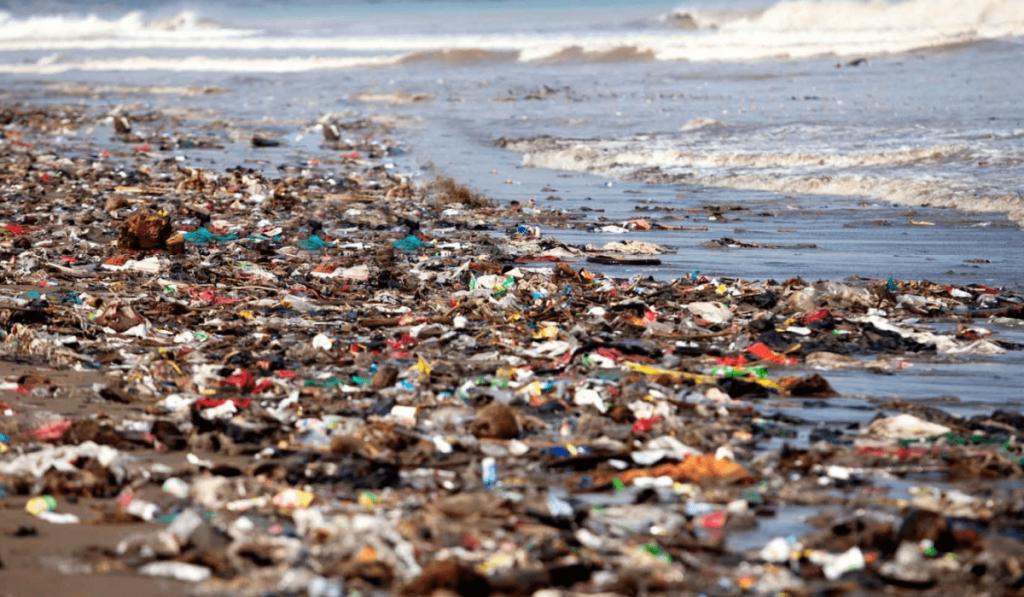 Su Kirliliği Nedir? Nedenleri, Sonuçları, Çeşitleri ve Önleme Yolları Nelerdir?