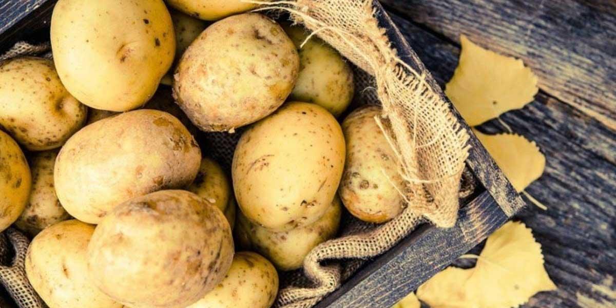 Patates Tüketiminde Nelere Dikkat Etmeliyiz?